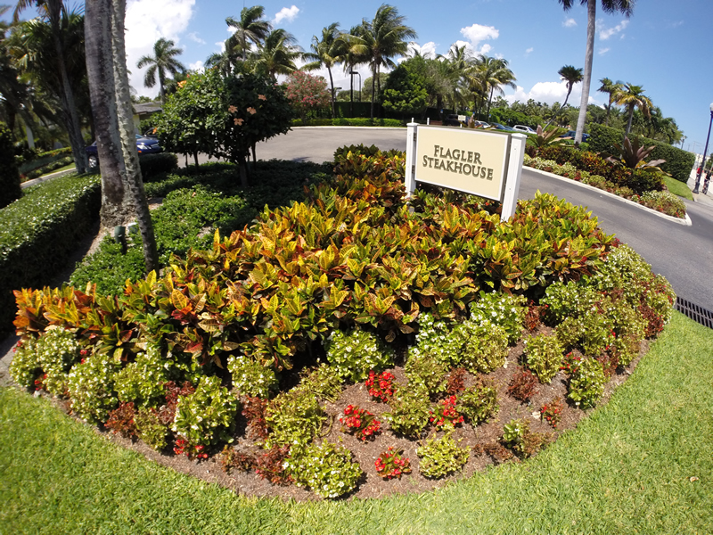 Residential Landscape Design and Maintenance Wellington Florida